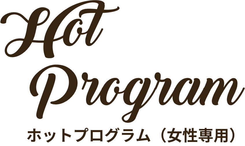 ホットプログラム